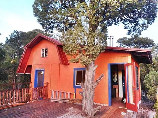 10 Wilson Road, Tijeras, NM 87059 (MLS #992099) :: Campbell & Campbell Real Estate Services