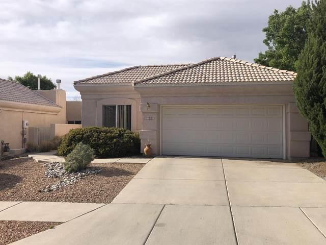 8731 Palomar Avenue NE, Albuquerque, NM 87109 (MLS #992102) :: Campbell & Campbell Real Estate Services