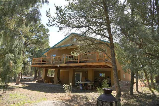 103 Acoma Road, Regina, NM 87046 (MLS #992116) :: The Buchman Group