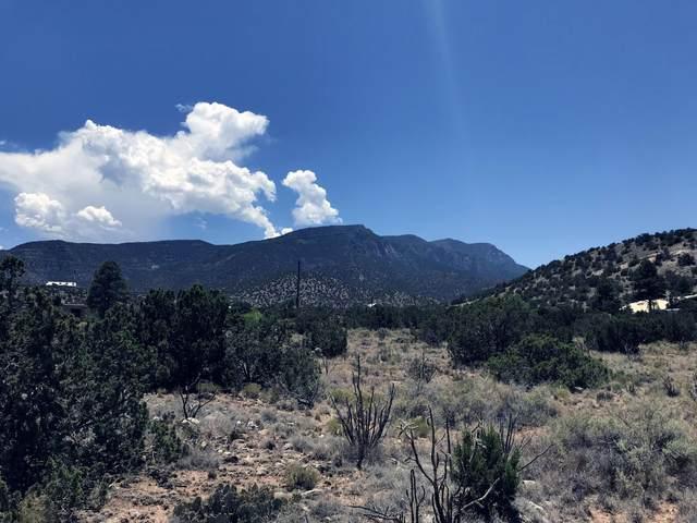 5 Rainbow Valley Road, Placitas, NM 87043 (MLS #992169) :: The Buchman Group
