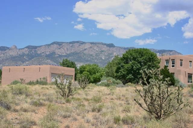 Del Rey Avenue NE, Albuquerque, NM 87122 (MLS #992284) :: The Buchman Group