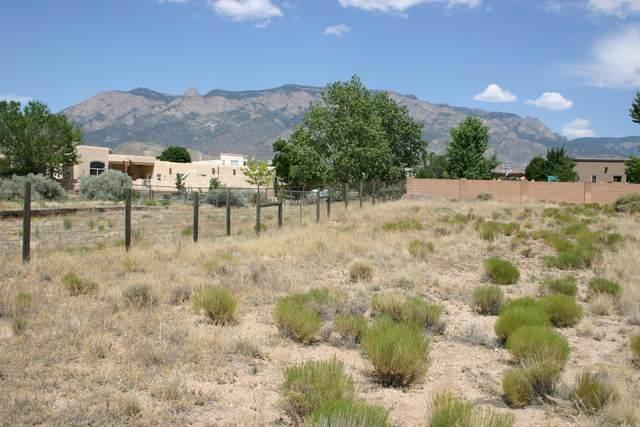 Glendale Avenue NE, Albuquerque, NM 87122 (MLS #992285) :: The Buchman Group