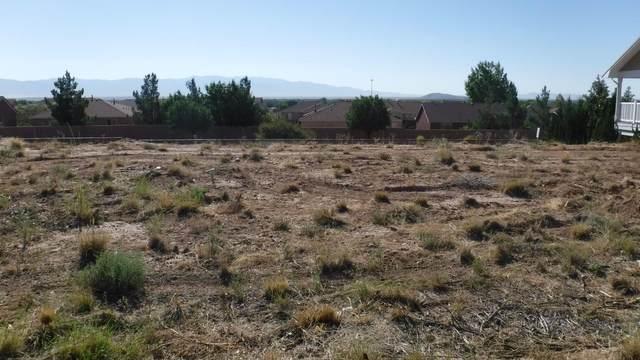 1161 Pinzon Street NW, Los Lunas, NM 87031 (MLS #992306) :: The Buchman Group