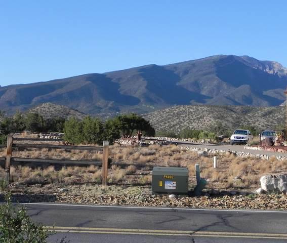 287 Camino De Las Huertas, Placitas, NM 87043 (MLS #992477) :: Sandi Pressley Team