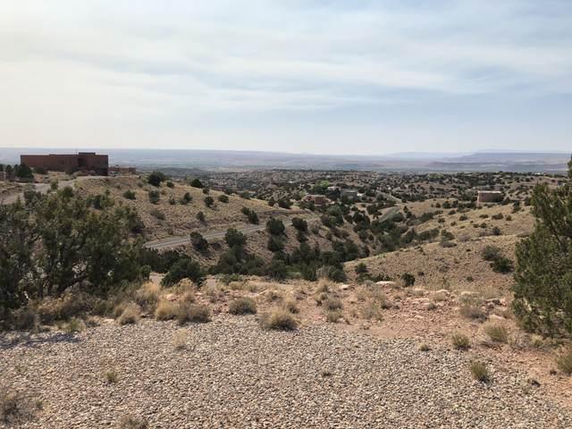 Pine, Placitas, NM 87043 (MLS #992489) :: The Buchman Group