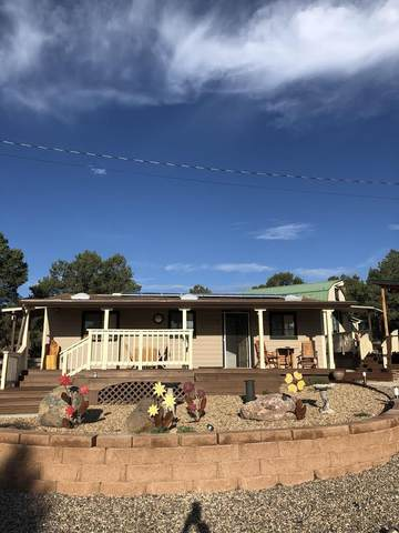 7 Log Cabin Drive, Datil, NM 87821 (MLS #992506) :: Campbell & Campbell Real Estate Services
