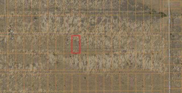 Lot 10 Rio Grande Estates S, Los Lunas, NM 87031 (MLS #992576) :: Campbell & Campbell Real Estate Services
