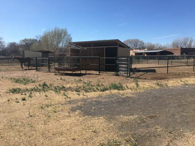 807 Paseo Del Banco Court SW, Albuquerque, NM 87105 (MLS #992604) :: Sandi Pressley Team