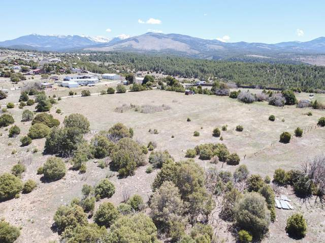 505 County Route 78, Truchas, NM 87578 (MLS #992701) :: The Buchman Group