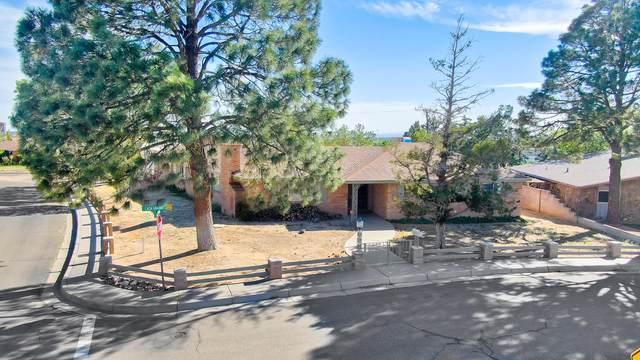 1001 Casa Grande Place NE, Albuquerque, NM 87112 (MLS #992740) :: Berkshire Hathaway HomeServices Santa Fe Real Estate