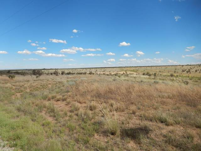 12 E Hill Ranch Road, Edgewood, NM 87015 (MLS #992746) :: Sandi Pressley Team