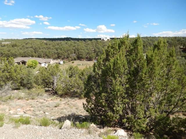 21 Camino Estribor, Edgewood, NM 87015 (MLS #992747) :: Sandi Pressley Team