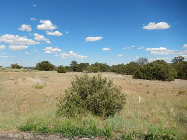 15 Meadowland Court, Tijeras, NM 87059 (MLS #992748) :: Campbell & Campbell Real Estate Services