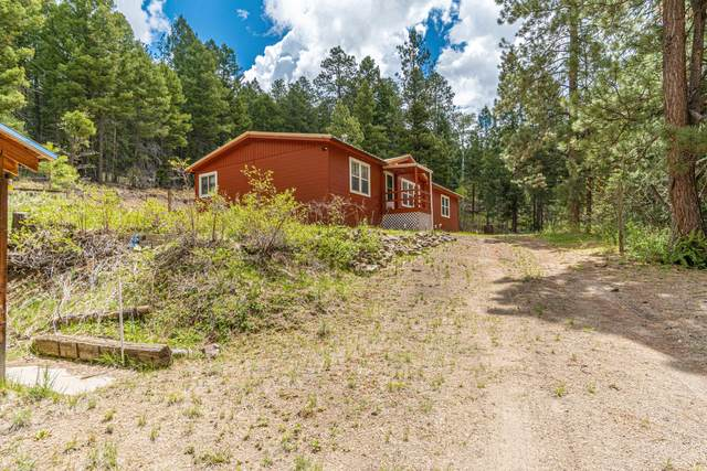 1112 Los Griegos Road, Jemez Springs, NM 87025 (MLS #992804) :: Campbell & Campbell Real Estate Services