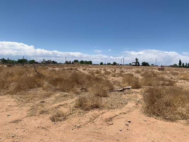 ? Hendrix Lane, Los Lunas, NM 87031 (MLS #992851) :: Campbell & Campbell Real Estate Services