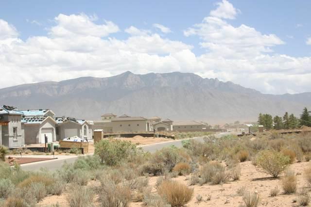 3223 Ilford (U20b99l5) Road NE, Rio Rancho, NM 87144 (MLS #992891) :: Sandi Pressley Team