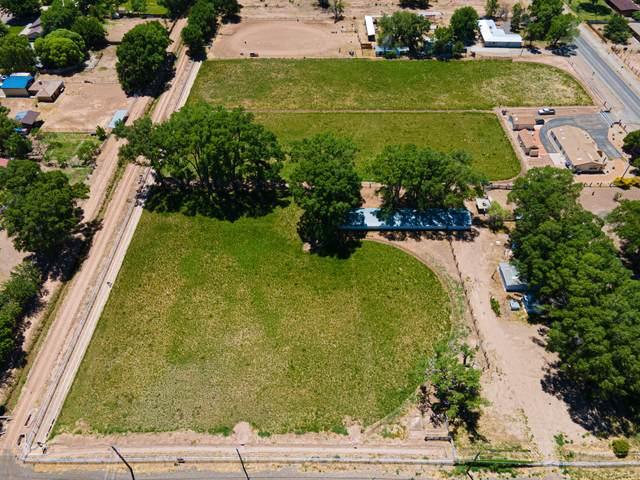 1075 N Bosque Loop, Bosque Farms, NM 87068 (MLS #992944) :: Sandi Pressley Team