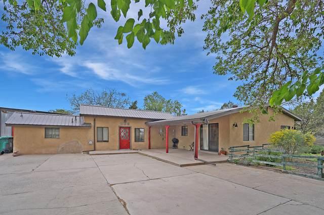 9912 2ND Street NW, Albuquerque, NM 87107 (MLS #992997) :: Sandi Pressley Team
