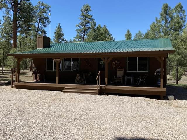 119 Pinetree, Ramah, NM 87321 (MLS #993161) :: The Buchman Group