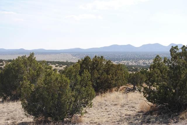 45 Pinon Springs Road, Magdalena, NM 87825 (MLS #993225) :: The Buchman Group