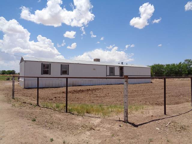1055 Lucinda Road, Los Lunas, NM 87031 (MLS #993241) :: Keller Williams Realty