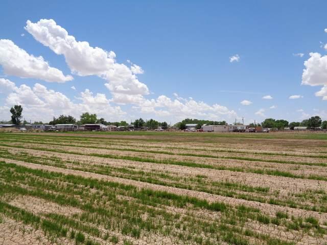 1055 Lucinda Road, Los Lunas, NM 87026 (MLS #993243) :: Keller Williams Realty