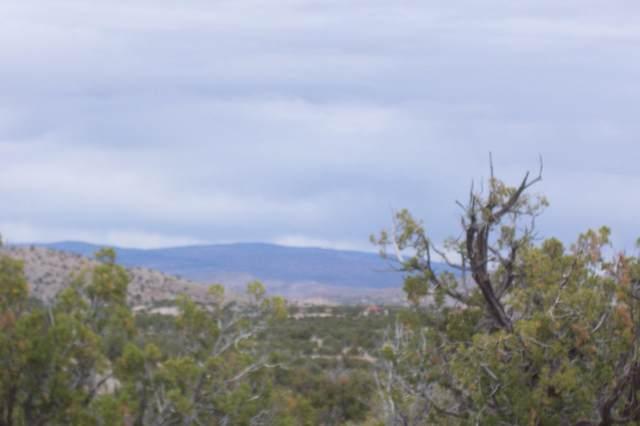 47 Camino Del  Sueno, Magdalena, NM 87825 (MLS #993360) :: Sandi Pressley Team