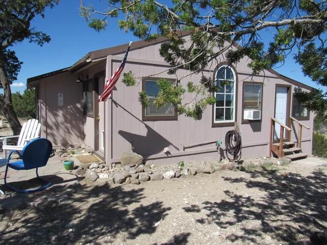47 Big Chief Road, Quemado, NM 87829 (MLS #993378) :: Campbell & Campbell Real Estate Services