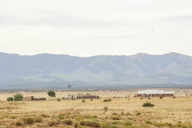 450 Highway 542, Estancia, NM 87016 (MLS #993455) :: Sandi Pressley Team