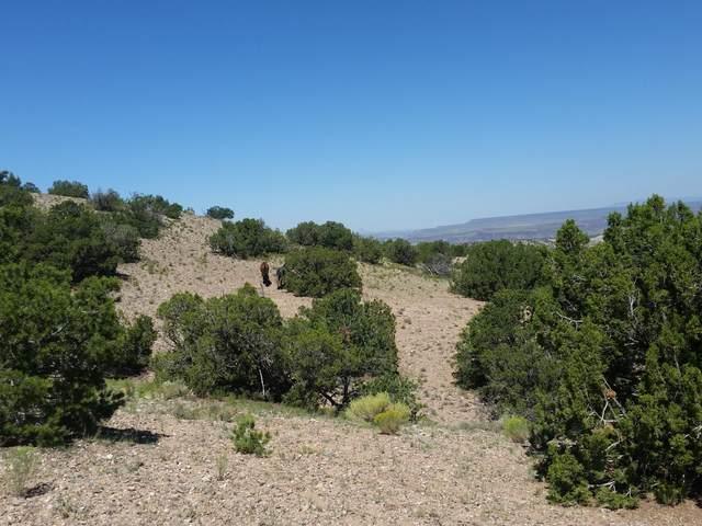 20 Camino Halcon, Placitas, NM 87043 (MLS #993577) :: Keller Williams Realty