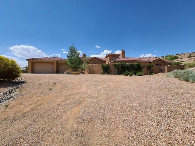 5 Camino Esperanza, Placitas, NM 87043 (MLS #993611) :: Sandi Pressley Team