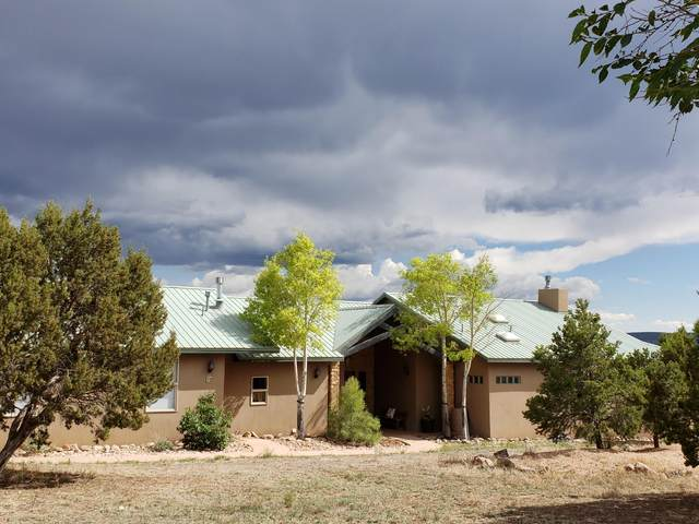 32 Woodlands Drive, Tijeras, NM 87059 (MLS #993653) :: Campbell & Campbell Real Estate Services
