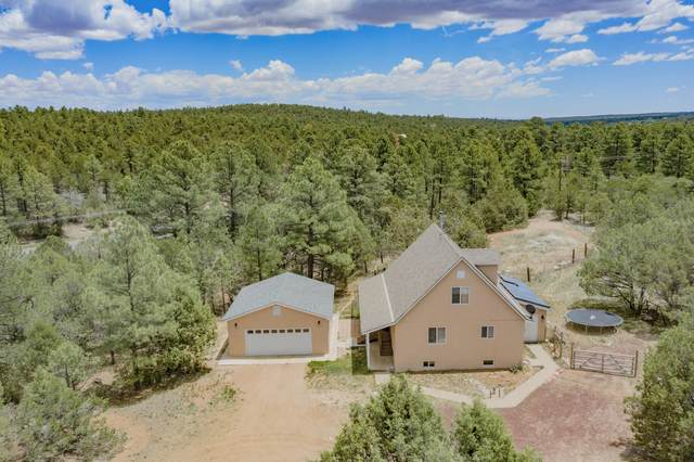11 Open Meadow Drive, Tijeras, NM 87059 (MLS #993685) :: Campbell & Campbell Real Estate Services