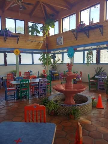 208 Mesquite, Socorro, NM 87801 (MLS #993715) :: Sandi Pressley Team