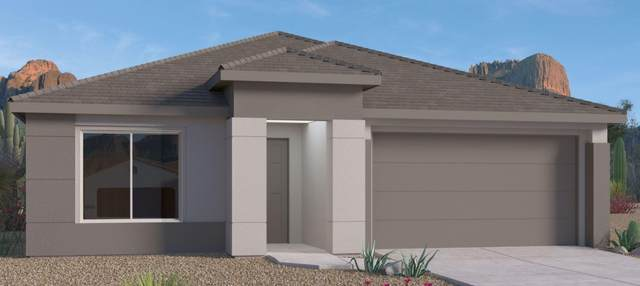 6601 Nacelle Road NE, Rio Rancho, NM 87144 (MLS #993733) :: Campbell & Campbell Real Estate Services
