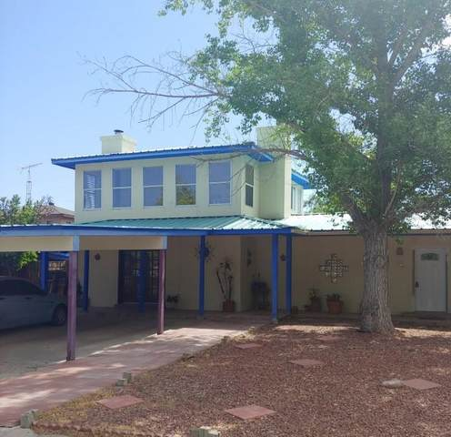 1008 Lopezville Road, Socorro, NM 87801 (MLS #993746) :: Sandi Pressley Team