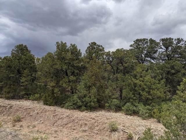 4 Belle Starr Road, Edgewood, NM 87015 (MLS #993747) :: Sandi Pressley Team