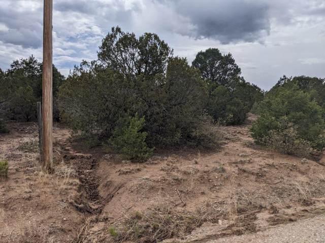 22 William Bonney Road, Edgewood, NM 87015 (MLS #993748) :: Sandi Pressley Team