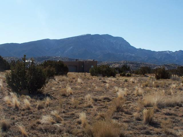Antonito Road, Placitas, NM 87043 (MLS #993764) :: Sandi Pressley Team