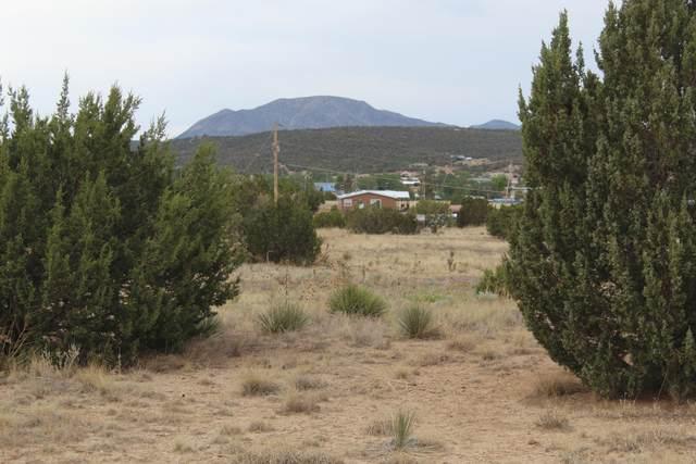 869 County Line Road, Edgewood, NM 87015 (MLS #993841) :: The Buchman Group