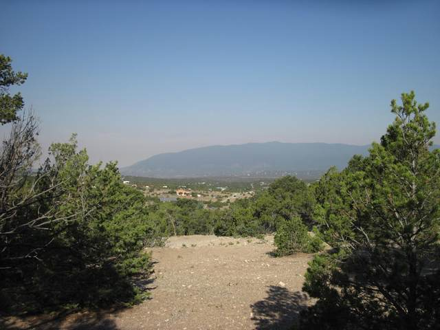 35 Vallecitos (Unimproved) Road, Tijeras, NM 87059 (MLS #993922) :: Campbell & Campbell Real Estate Services