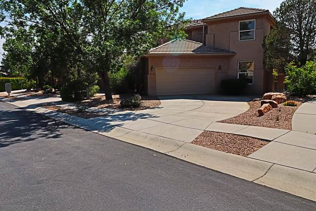 6019 Purple Aster Lane NE, Albuquerque, NM 87111 (MLS #994025) :: Campbell & Campbell Real Estate Services