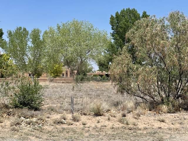 Lot 5 Mesa Vista Lane, Corrales, NM 87048 (MLS #994067) :: Keller Williams Realty