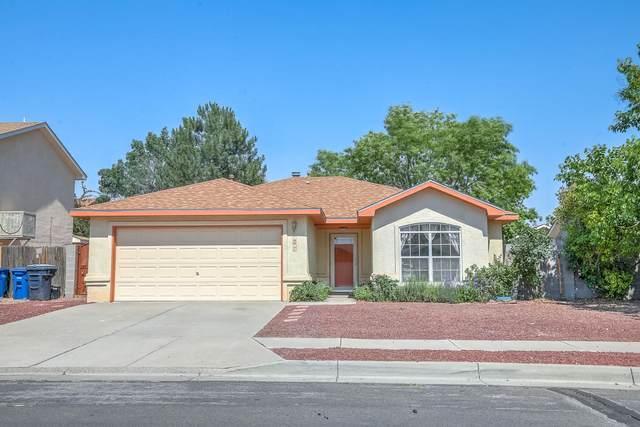 1816 Tierra Del Oso Drive NW, Albuquerque, NM 87120 (MLS #994072) :: Berkshire Hathaway HomeServices Santa Fe Real Estate
