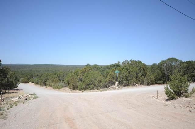 54 Jesse James Road, Edgewood, NM 87015 (MLS #994075) :: Sandi Pressley Team