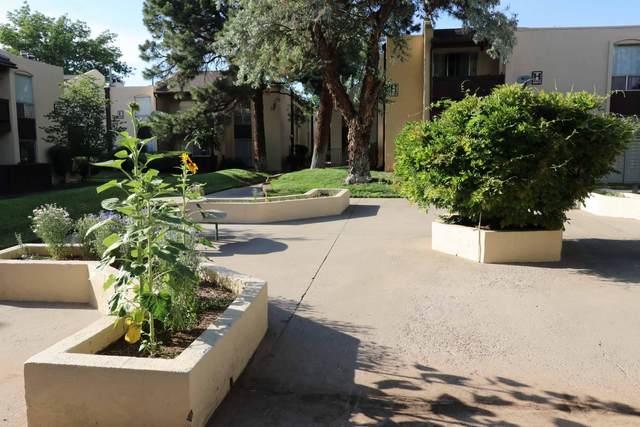 1601 Pennsylvania Street NE P-4, Albuquerque, NM 87110 (MLS #994095) :: Berkshire Hathaway HomeServices Santa Fe Real Estate