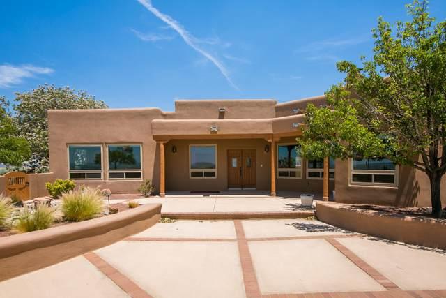 10 Third Mesa Court, Placitas, NM 87043 (MLS #994097) :: Sandi Pressley Team