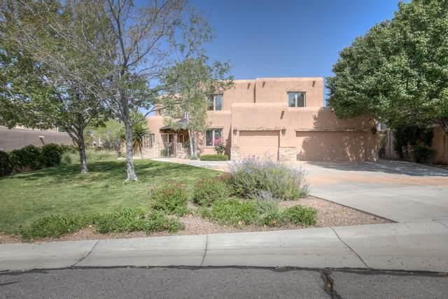 8717 Royal Glo Drive NE, Albuquerque, NM 87122 (MLS #994117) :: Keller Williams Realty