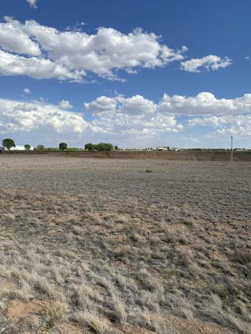 11 Capitan Street, Moriarty, NM 87035 (MLS #994170) :: Campbell & Campbell Real Estate Services