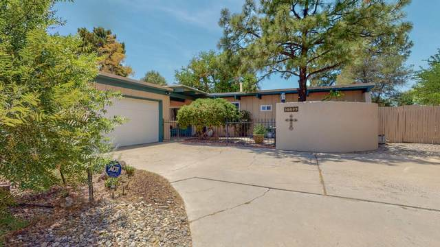 10005 Greene Avenue NW, Albuquerque, NM 87114 (MLS #994198) :: Sandi Pressley Team